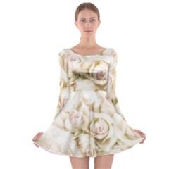 Pastel Roses Antique Vintage Long Sleeve Skater Dress
