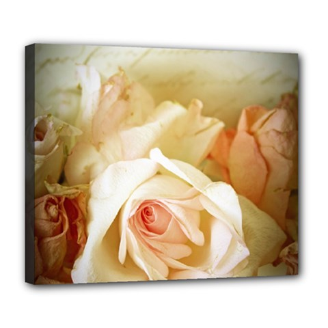 Roses Vintage Playful Romantic Deluxe Canvas 24  X 20