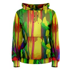 Abstract Vibrant Colour Botany Women s Pullover Hoodie