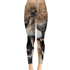 Male Lion Angry Leggings