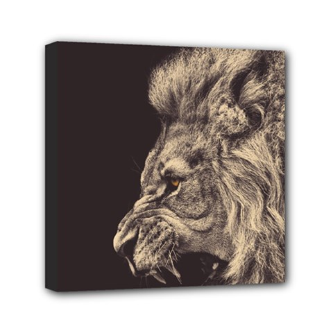 Angry Male Lion Mini Canvas 6  X 6