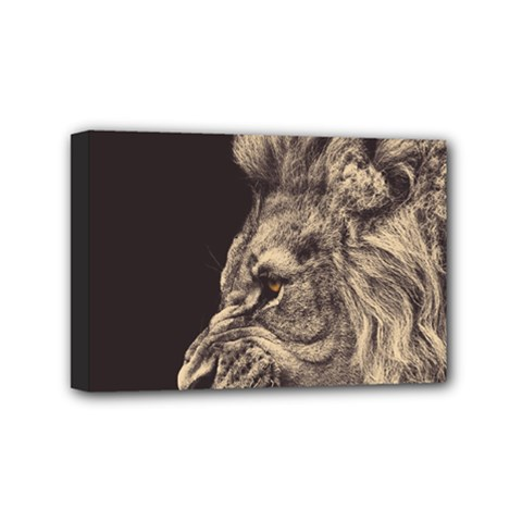 Angry Male Lion Mini Canvas 6  X 4