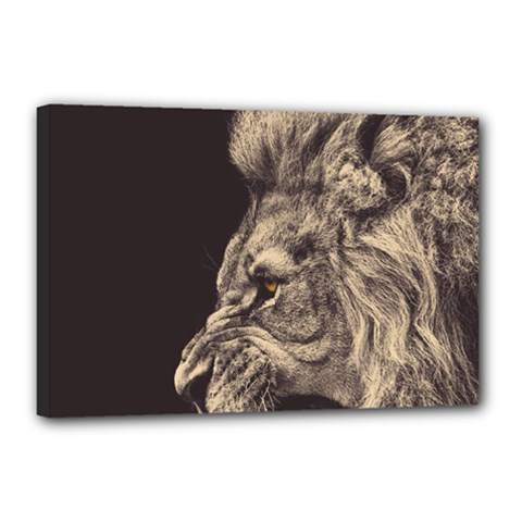 Angry Male Lion Canvas 18  X 12