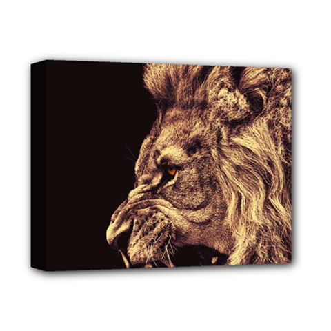 Angry Male Lion Gold Deluxe Canvas 14  X 11