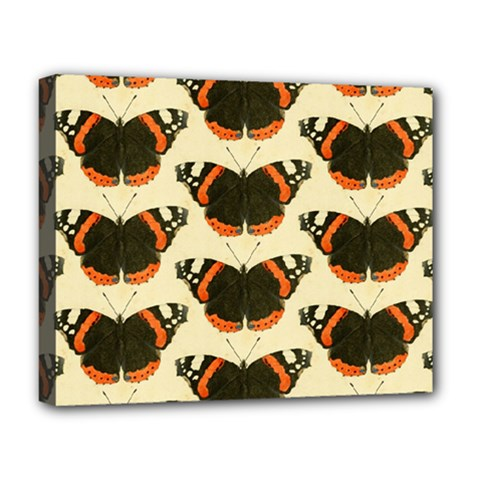 Butterfly Butterflies Insects Deluxe Canvas 20  X 16