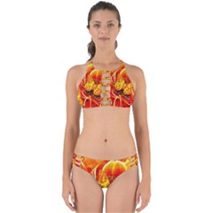 Arrangement Butterfly Aesthetics Orange Background Perfectly Cut Out Bikini Set