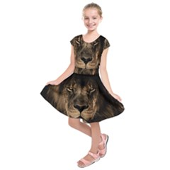 African Lion Mane Close Eyes Kids  Short Sleeve Dress
