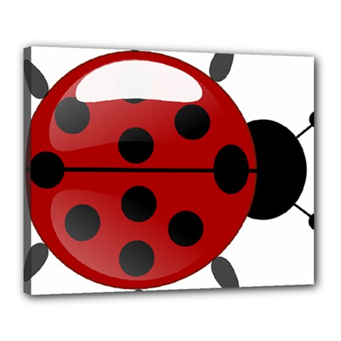 Ladybug Insects Colors Alegre Canvas 20  X 16