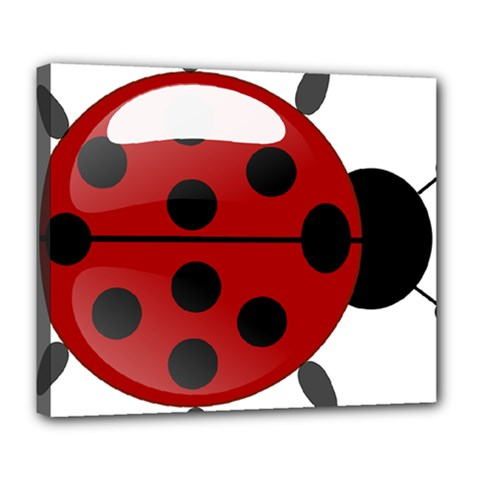 Ladybug Insects Colors Alegre Deluxe Canvas 24  X 20
