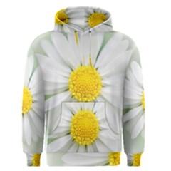 Art Daisy Flower Art Flower Deco Men s Pullover Hoodie