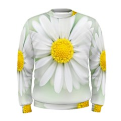 Art Daisy Flower Art Flower Deco Men s Sweatshirt