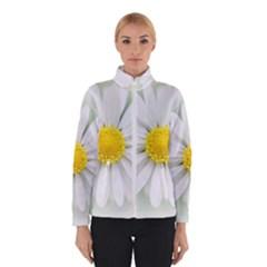 Art Daisy Flower Art Flower Deco Winterwear