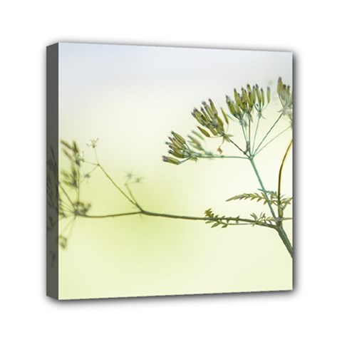 Spring Plant Nature Blue Green Mini Canvas 6  X 6