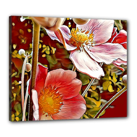 Flower Hostanamone Drawing Plant Canvas 24  X 20