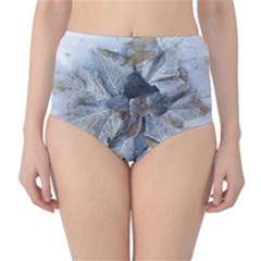 Winter Frost Ice Sheet Leaves High Waist Bikini Bottoms