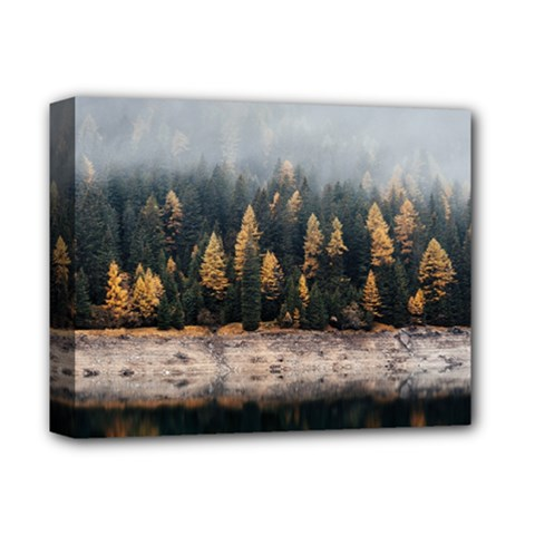 Trees Plants Nature Forests Lake Deluxe Canvas 14  X 11