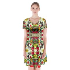 Chicken Monkeys Smile In The Floral Nature Looking Hot Short Sleeve V Neck Flare Dress