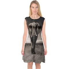 Elephant Black And White Animal Capsleeve Midi Dress