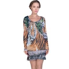 Animal Big Cat Safari Tiger Long Sleeve Nightdress