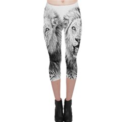 Lion Wildlife Art And Illustration Pencil Capri Leggings