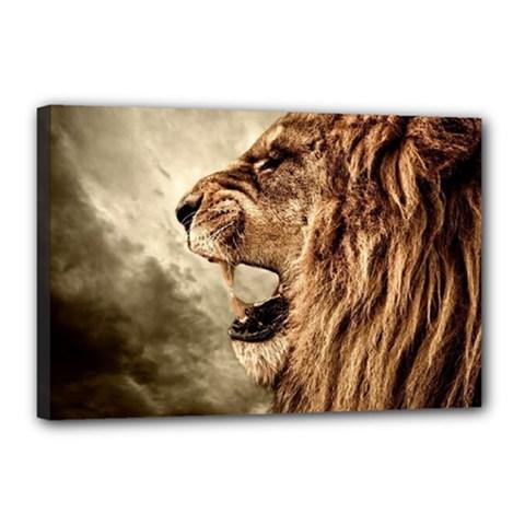 Roaring Lion Canvas 18  X 12