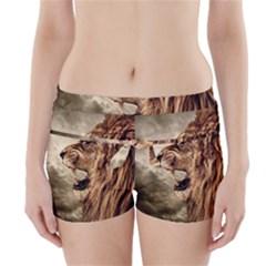 Roaring Lion Boyleg Bikini Wrap Bottoms