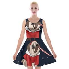 Pug Xmas Velvet Skater Dress