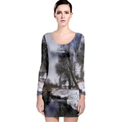 Winter Bach Wintry Snow Water Long Sleeve Bodycon Dress