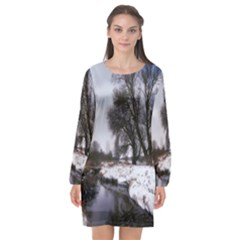 Winter Bach Wintry Snow Water Long Sleeve Chiffon Shift Dress
