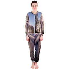 Winter Lake Cold Wintry Frozen Onepiece Jumpsuit (ladies)