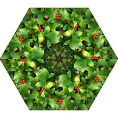 Christmas Season Floral Green Red Skimmia Flower Mini Folding Umbrellas