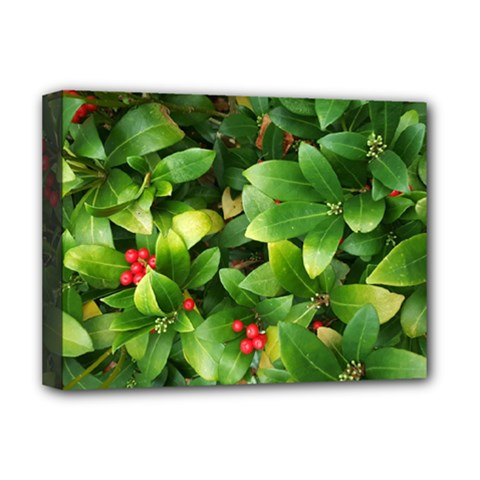 Christmas Season Floral Green Red Skimmia Flower Deluxe Canvas 16  X 12