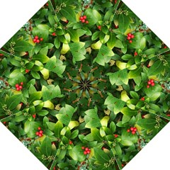 Christmas Season Floral Green Red Skimmia Flower Hook Handle Umbrellas (large)