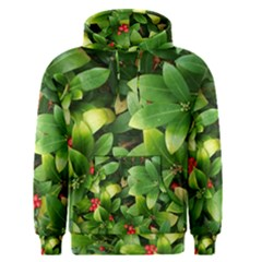 Christmas Season Floral Green Red Skimmia Flower Men s Pullover Hoodie