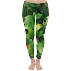 Christmas Season Floral Green Red Skimmia Flower Classic Winter Leggings