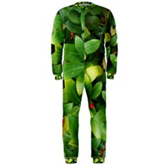 Christmas Season Floral Green Red Skimmia Flower Onepiece Jumpsuit (men)