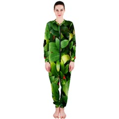 Christmas Season Floral Green Red Skimmia Flower Onepiece Jumpsuit (ladies)