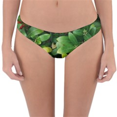 Christmas Season Floral Green Red Skimmia Flower Reversible Hipster Bikini Bottoms
