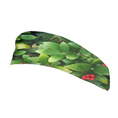 Christmas Season Floral Green Red Skimmia Flower Stretchable Headband