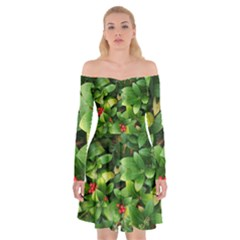 Christmas Season Floral Green Red Skimmia Flower Off Shoulder Skater Dress