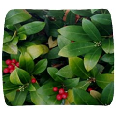 Christmas Season Floral Green Red Skimmia Flower Back Support Cushion