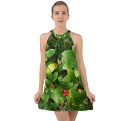 Christmas Season Floral Green Red Skimmia Flower Halter Tie Back Chiffon Dress