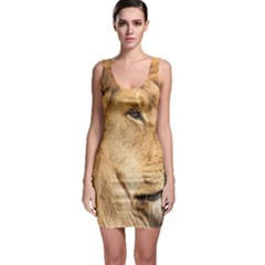 Big Male Lion Looking Right Bodycon Dress