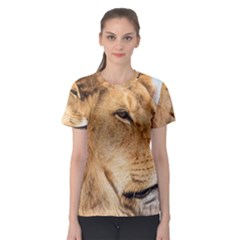 Big Male Lion Looking Right Women s Sport Mesh Tee