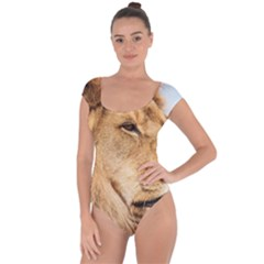 Big Male Lion Looking Right Short Sleeve Leotard