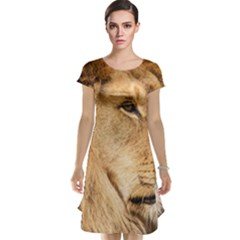 Big Male Lion Looking Right Cap Sleeve Nightdress