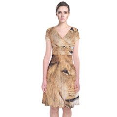 Big Male Lion Looking Right Short Sleeve Front Wrap Dress