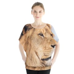 Big Male Lion Looking Right Blouse