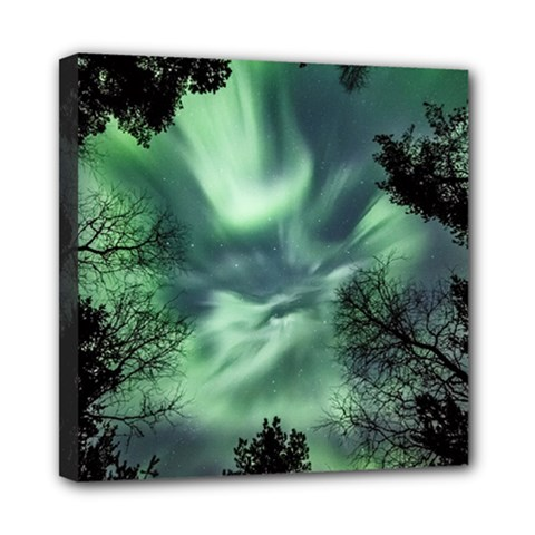 Northern Lights In The Forest Mini Canvas 8  X 8