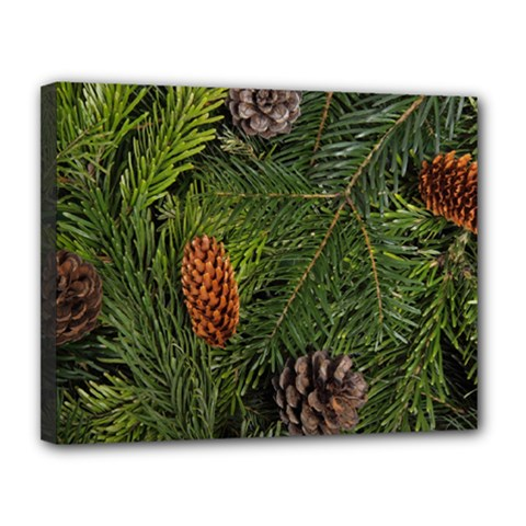 Branch Christmas Cone Evergreen Canvas 14  X 11
